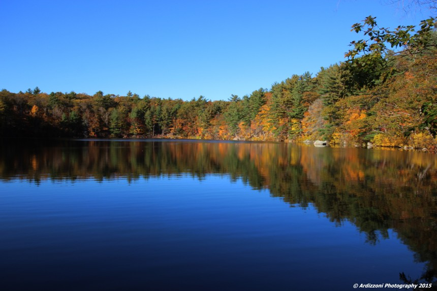 October 26, 2015 Buswell Pond in October